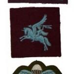 6th Airborne insignia