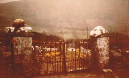 old gate 001