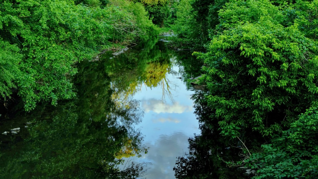 Pennypack