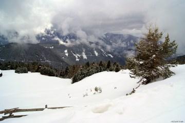 tre splendide escursioni sulla plose: neve, abeti innevati, nuvole basse, l'atmosfera invernale