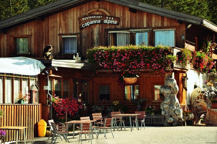 rifugio scotoni e lago lagazuoi: la capanna alpina e i suoi cani custodi