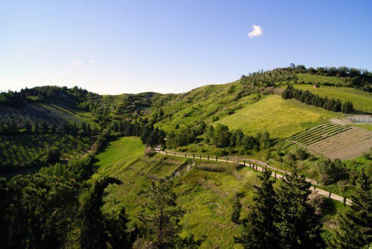 sentiero nella natura tra due colli di brisighella