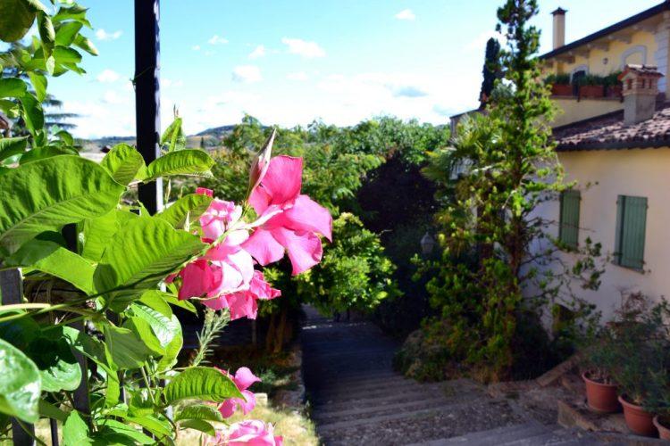 strada con casette e fiori a brisighella