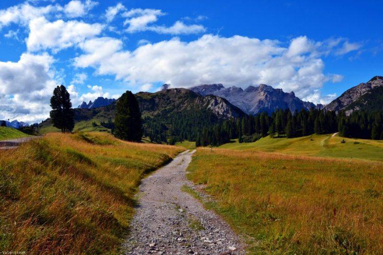 bellissimi sentieri presso l'alpe di prato piazza
