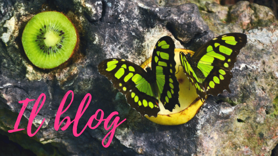collaborazioni: kilig travel blog