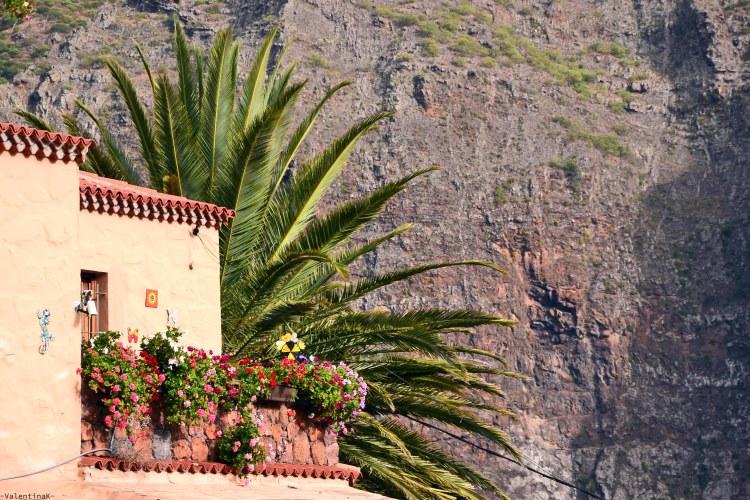 parete di una casa di Masca, con dietro una parete scura di montagna e una palma