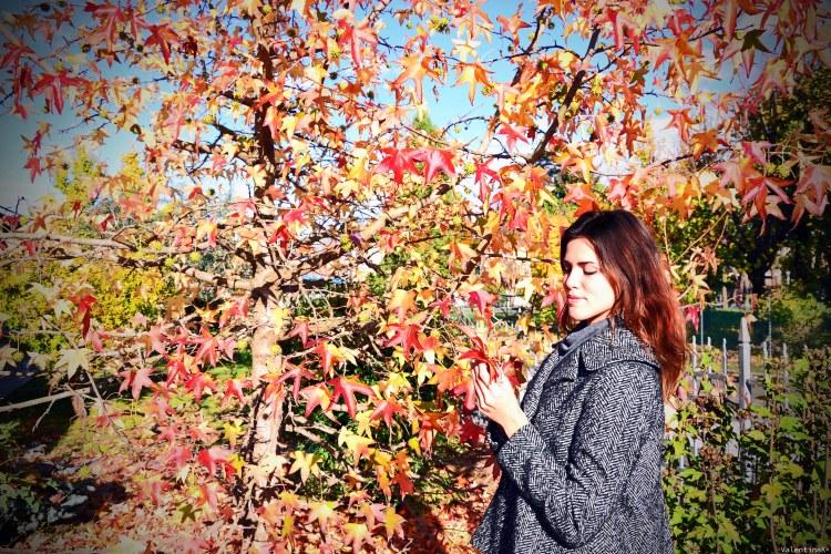 valentina e un liquidambar dai bellissimi colori autunnali di ottobre