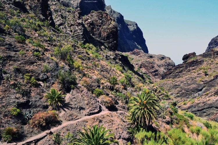 Escursione al Barranco di Masca: primo tratto del sentiero del barranco di masca