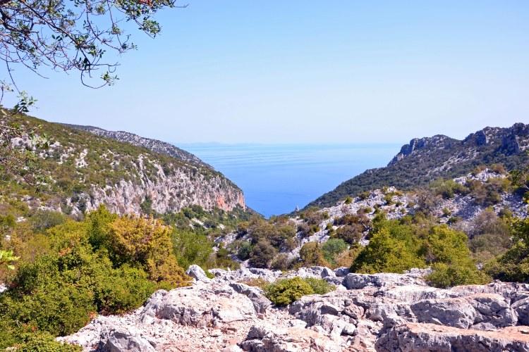 cala goloritzè itinerario di trekking: panorama sublime di macchia mediterranea