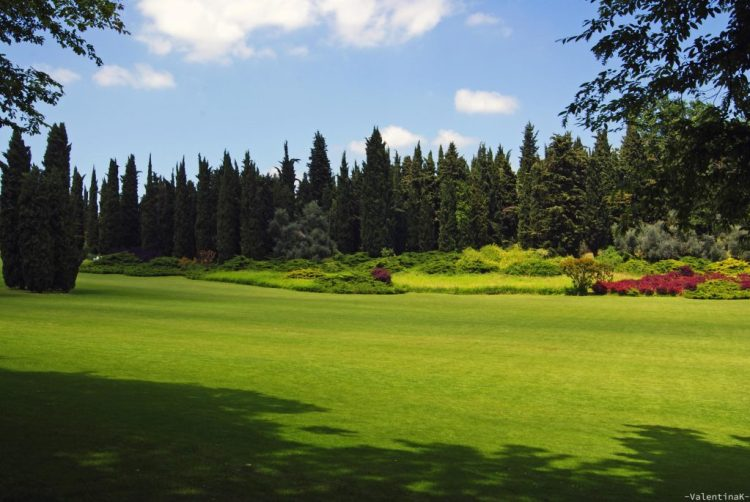 Parco Giardino Sigurtà: il grande tappeto erboso illuminato dal sole