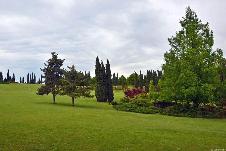 Parco Giardino Sigurtà: tappeto erboso e oasi