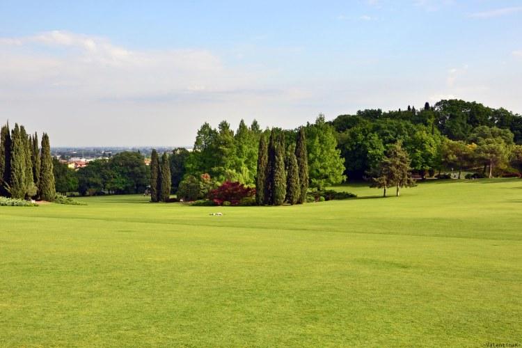 Parco Giardino Sigurtà: il grande tappeto erboso