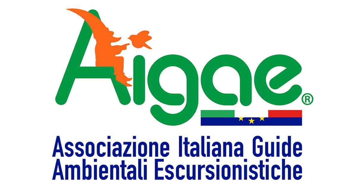 Aigae logo