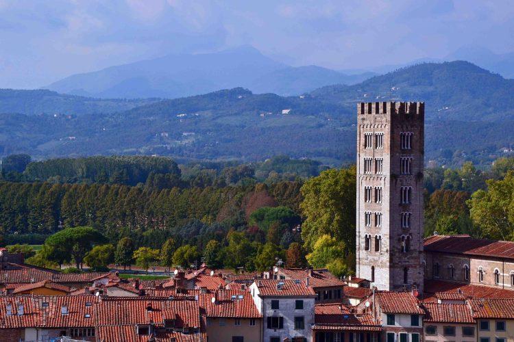 pisa e lucca: torre guinigi di lucca e panorama verso le colline