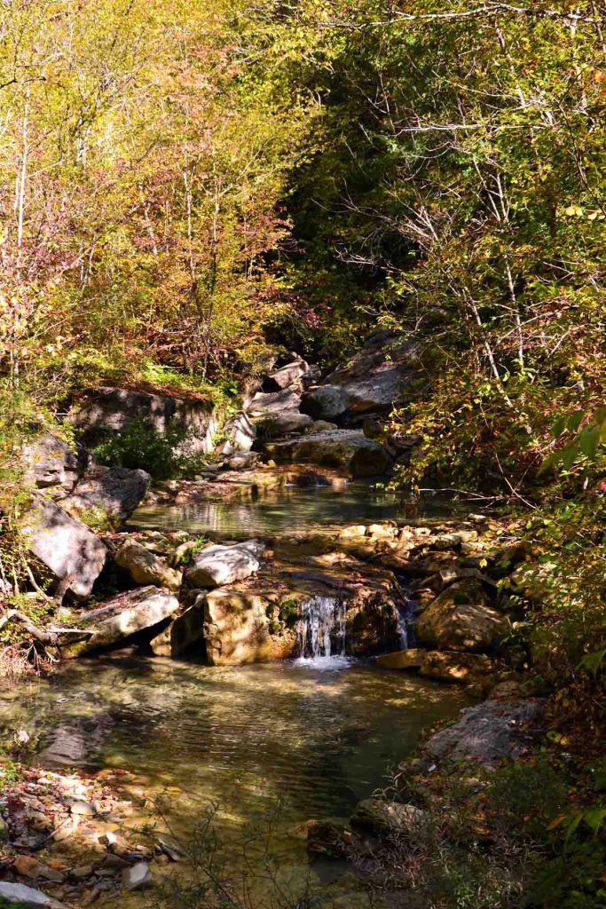 cascata dell'acquacheta: il torrente circondato dalla vegetazione