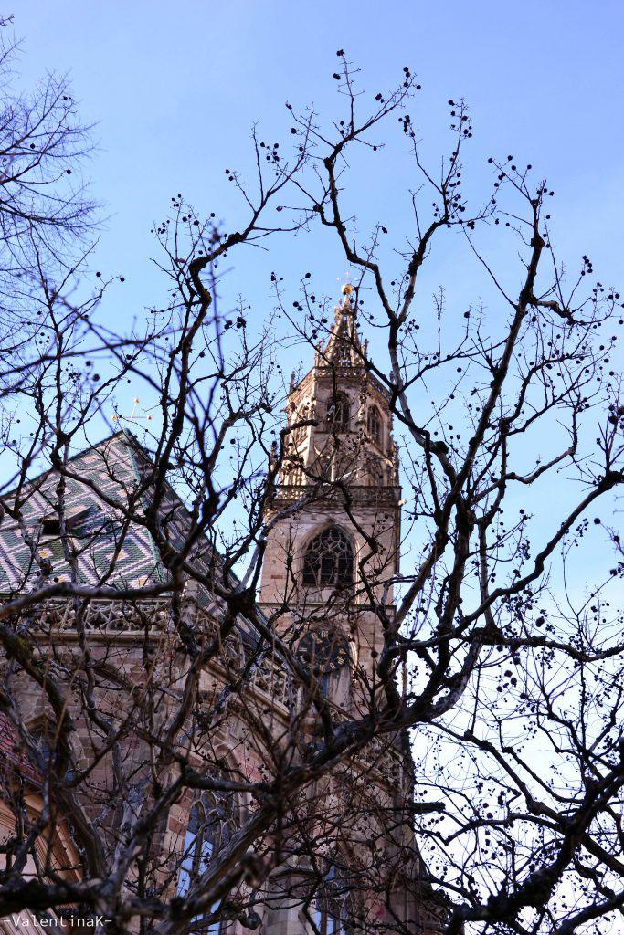 natale a bolzano: prospettiva tra i rami del duomo gotico