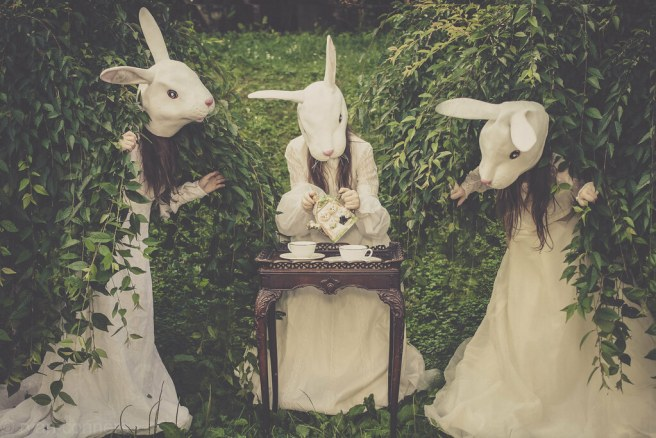 Rabbits' Tea Time
