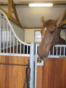 loddon stables (16)