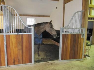 loddon stables (17)