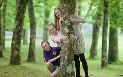 New world record tree hug