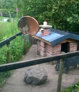 Bruno's House. (Pic: Coolwood Wildlife Facebook)