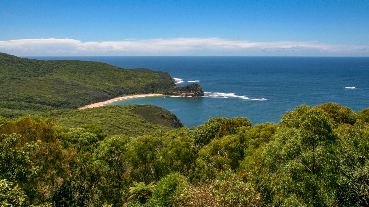Explore Bouddi National Park