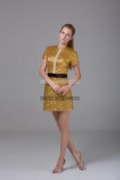 €139 - Elegant High Neck Short Golden Evening Dresses http://www.fannycrown.com/elegant-high-neck-short-golden-evening-dresses.html