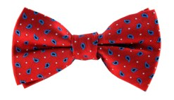 MyKindOfTie €15 - Rohan Paisley Bow Tie http://bit.ly/1R8btcM
