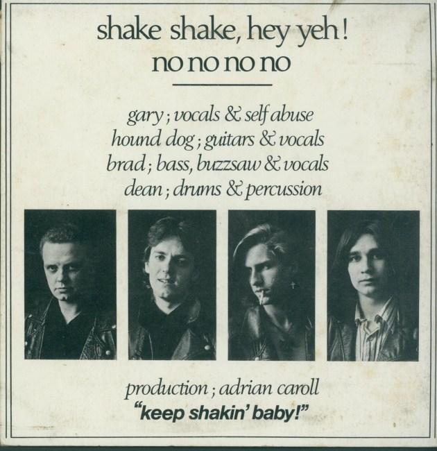 shake-shake-hey-yeh-back