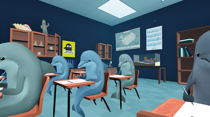 dolphins_test