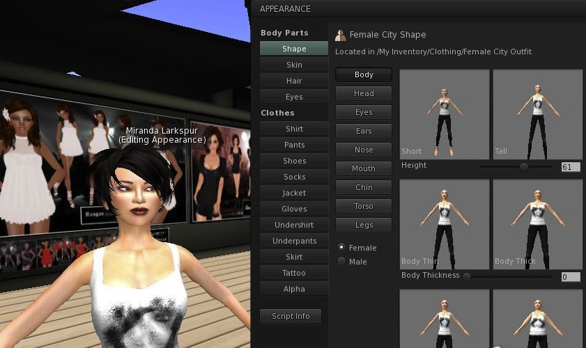 second-life-customize_1
