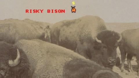 riskybison__large_1