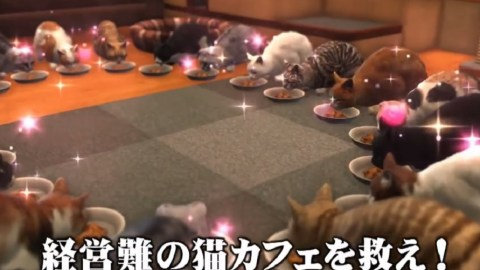 yakuza-6-cat-cafe