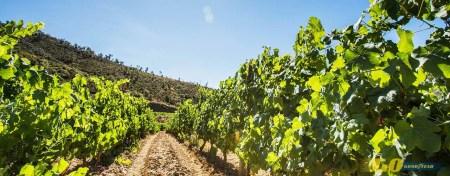 Agroturismo en La Rioja