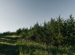 Lucas County Iowa Land For Sale (112)
