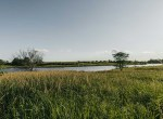 Lucas County Iowa Land For Sale (96)