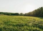 Land for Sale Decatur County Iowa-12
