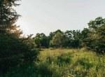 Land for Sale Decatur County Iowa-17