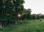 Land for Sale Decatur County Iowa-30