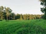 Land for Sale Decatur County Iowa-31