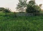 Land for Sale Decatur County Iowa-48