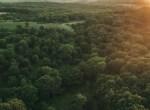 Land for Sale Decatur County Iowa-88
