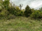 Land For Sale_Building Site_Dallas County Iowa_6 acres (10)