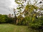 Land For Sale_Building Site_Dallas County Iowa_6 acres (21)