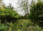 Land For Sale_Building Site_Dallas County Iowa_6 acres (7)