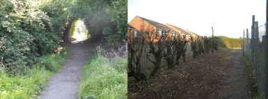 Woodside path - Before / After