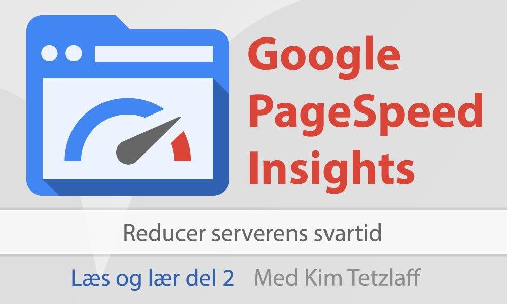Reducer serverens svartid – Google Pagespeed Insights – Læs og lær del 2