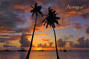 "Sunset, Antigua W.I. Collectible Postcard ANU4655,  size 153mm * 102mm ( 6"" x 4"")"