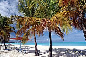 Tranquility Bay Postcard