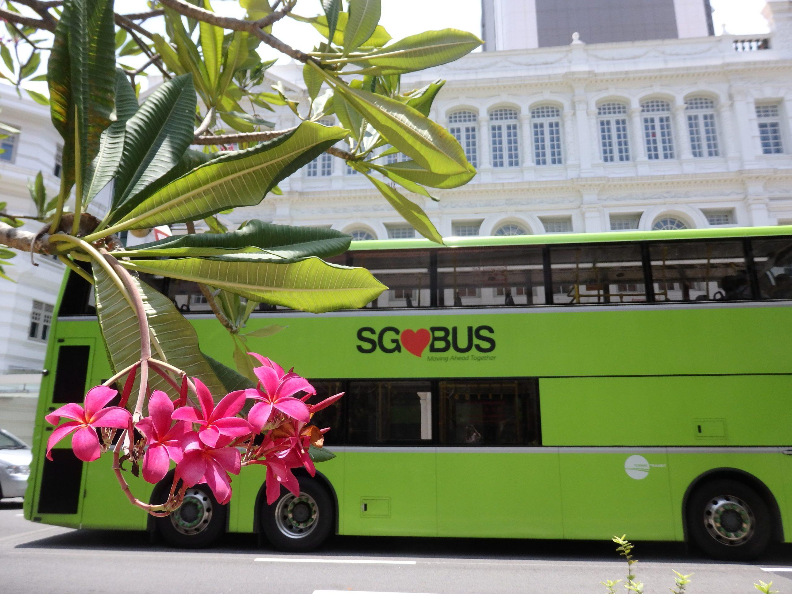 シンガポール観光